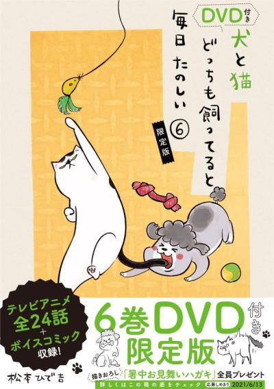 DVD付き 犬と猫どっちも飼ってると毎日たのしい(6)限定版 (講談社キャラクターズライツ) [ 松本 ひで吉 ]