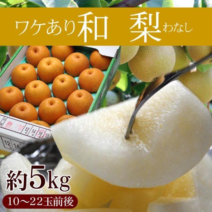 「訳あり和梨 5kg (10-22玉前後)※梨、和梨、なし、ナシ、数量限定、送料無料」を楽天で購入