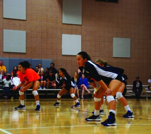 Female volleyball players in a gym