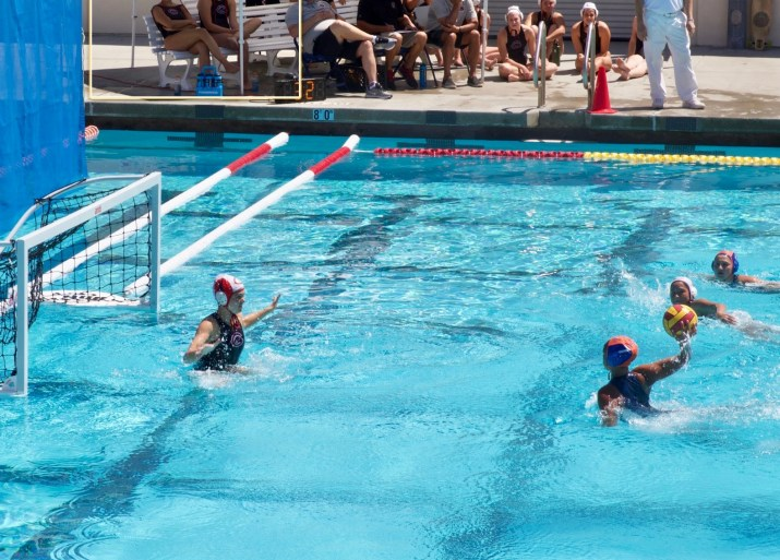 Four female waterpolo players in the water