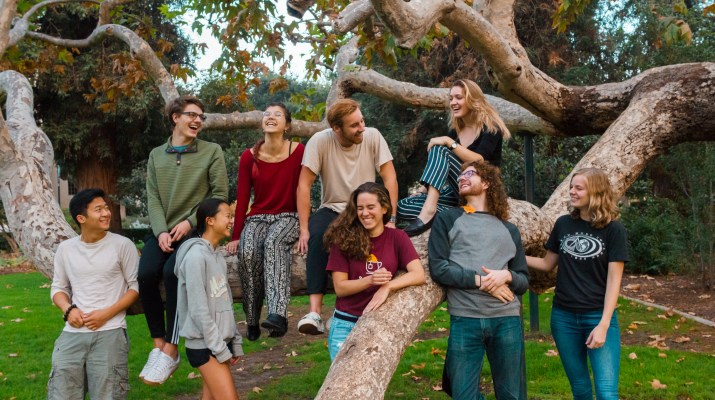A group of nine college students sits in and stands around a tree smiling and laughing with each other.