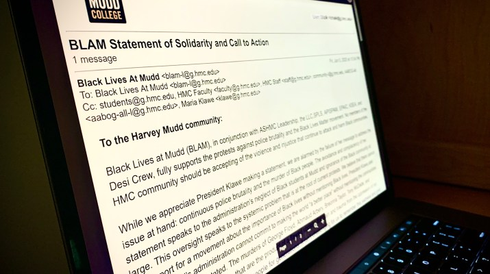 "A laptop screen shows a page of text that reads ""BLAM Statement of Solidarity and Call to Action"""