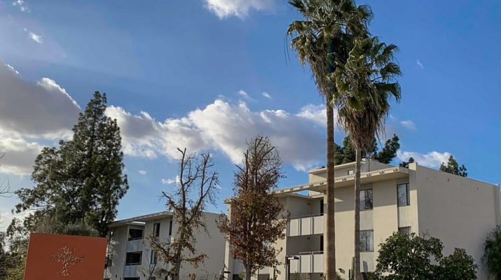 "A photo of palm trees in front of a building with a blue sky. An orange sign in the corner says ""Pitzer College."""