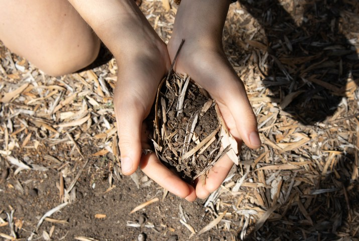 A student holds up some soil while composting in a garden on campus.