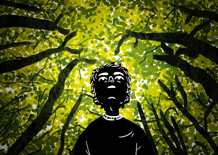 Drawing of a person looking up at the trees