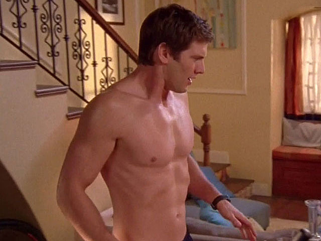 Ryan McPartlin  Chucks Captain Awesome Hunk of the