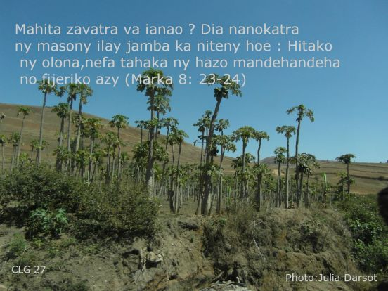 Image du Désert Tsodrano.com