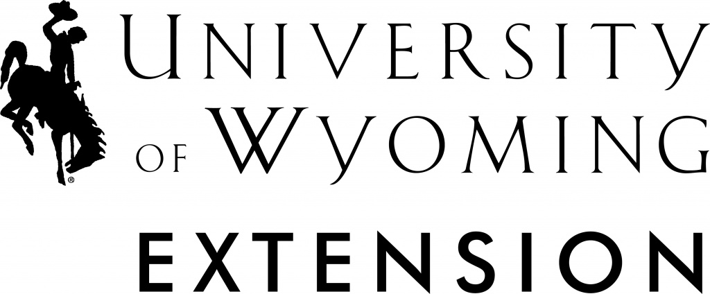 Wind River UW Extension offering Leadership course