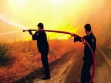 Οι ήρωες στη μάχη της φωτιάς των Τσουκαλάδων Βοιωτίας.