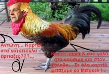 Επιτέλους!!! Το καρτέλ των εργολάβων-εκδοτών, ξανα-ανακάλυψε το καρτέλ του κοτόπουλου