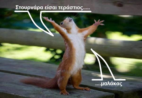 ΤΡΩΚΤΙΚΟ -ΕΝΘΟΥΣΙΑΣΜΕΝΟ