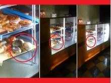 Τζέντα Σαουδικής Αραβίας: Ποντίκι… «αλωνίζει» σε βιτρίνα φούρνου και δοκιμάζει ό,τι υπάρχει γύρω του (βίντεο)