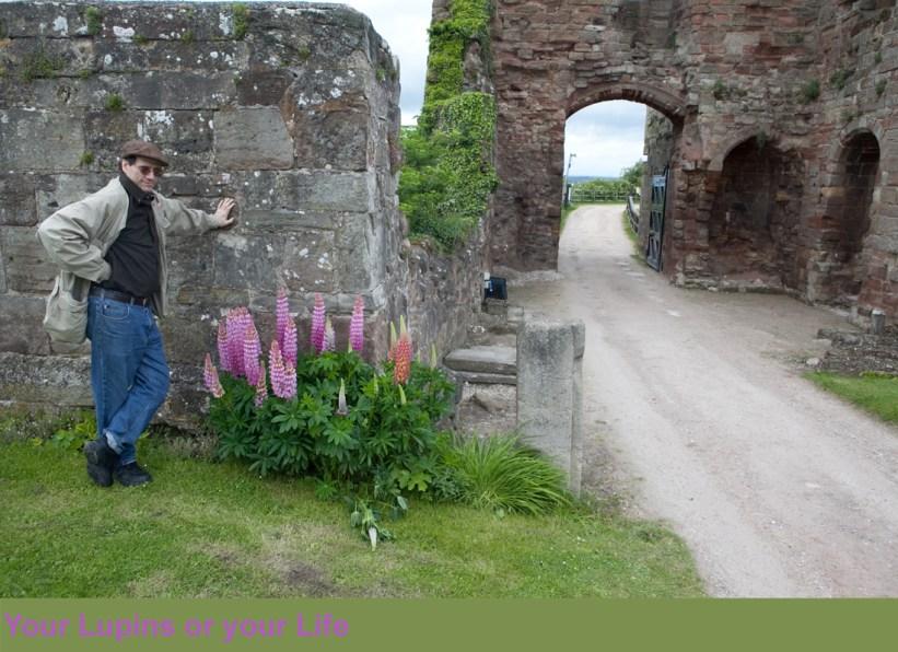 The White Lady of Tutbury - T Spoon Phillips - John O'Gaunt's Gateway