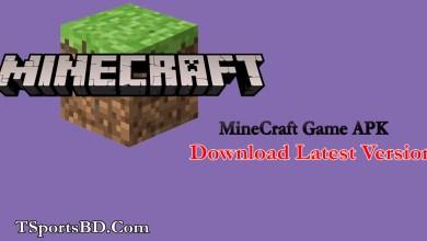 Minecraft Java Edition Game