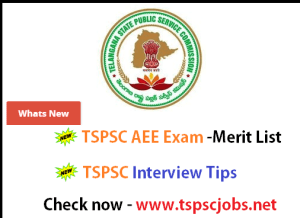 tspsc aee interview list results 2015-2016