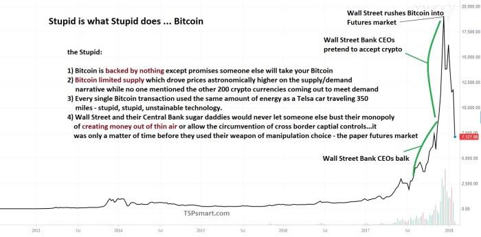 the short history of Bitcoin