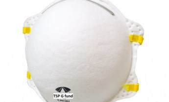 TSP G fund mask