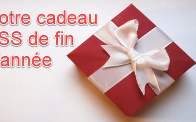 Découvrez votre cadeau TSS de fin d'année: une formation gratuite