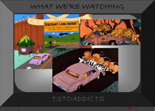 Simpsons Car Discount Lion Safari