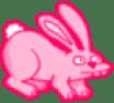 Pink Bunny 1