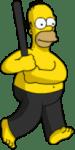 Homer Ninja
