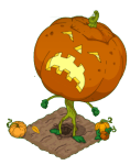 Grand Pumpkin 1