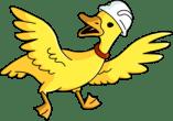 Stewart Duck