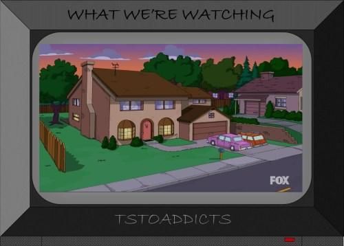 Brown House Simpsons 2