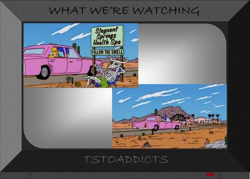 Stagnant Springs Health Spa Simpsons