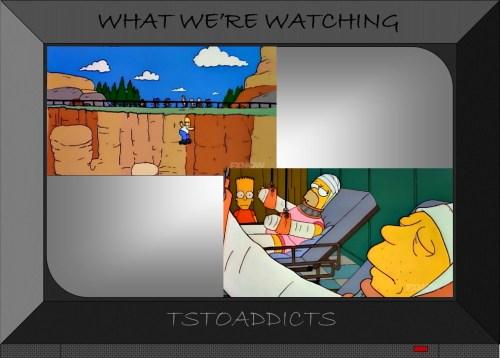 Homer Simpson Springfield Gorge