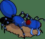 robotant_nippy_menu