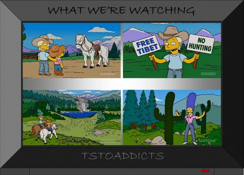 Luke Stetson Simpsons 2