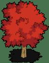 tree09