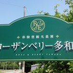 DSC 2603 150x150 【ローザンベリー多和田】ランチビュッフェで大満足!【食べ放題】