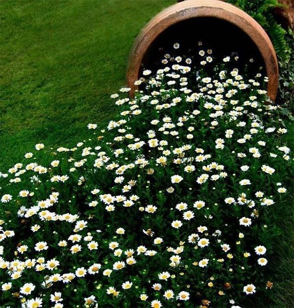 割れてしまった植木鉢の再利用方法4