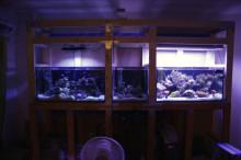 小さな動物園-20120813
