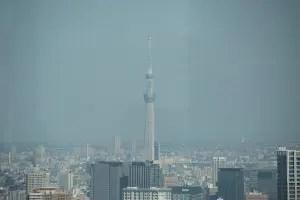 東京スカイツリー都庁展望台から