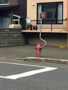 稚内市街地消火栓