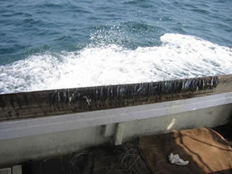 太刀魚テンヤ釣りの仕方