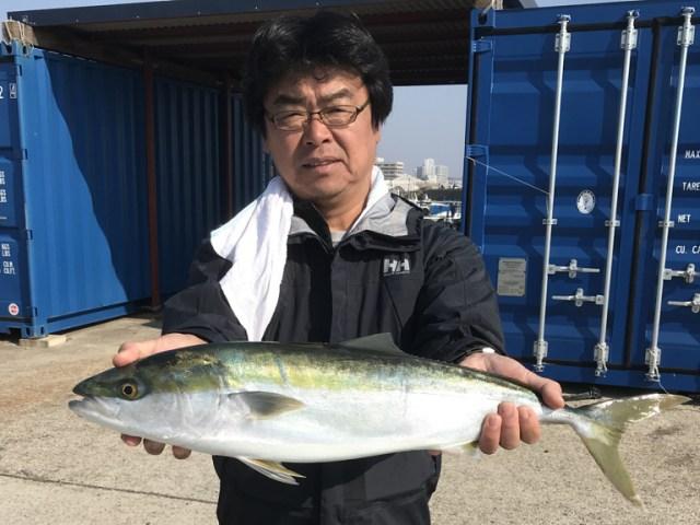 11月5日(日)の釣果(メジロ・ハマチ)