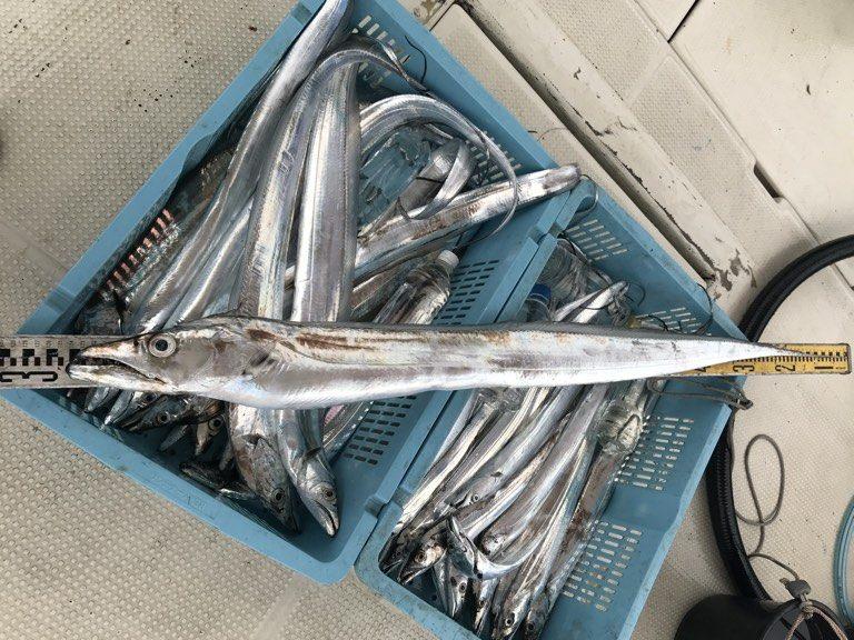 10月19日(土)の釣果(タチウオ125cm含む船中36匹)
