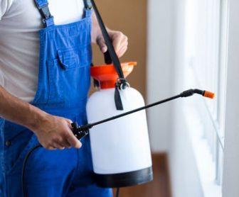 شركة مكافحة حشرات بالجبيل 0553042529 بافضل المبيدات وبالضمان