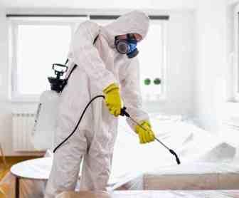 شركة مكافحة العتة بالجبيل 0599220282 ابادة تامة بافضل المبيدات الامنة