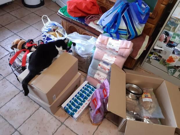 Spenden im Tierheim und unterm Wünschebaum
