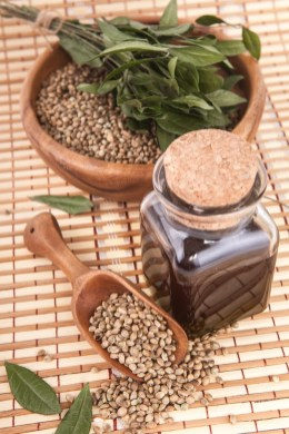 hemp oil & seed