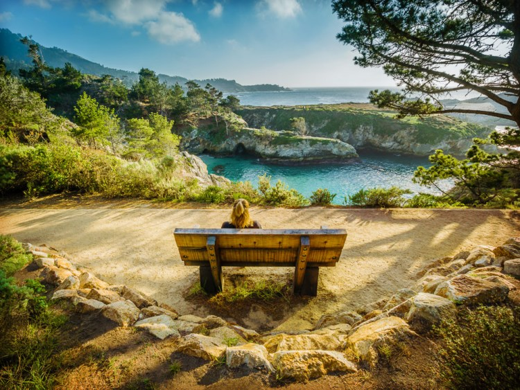 California Bench With View Point Lobos