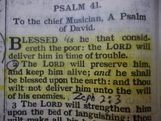 Bible Verses 048