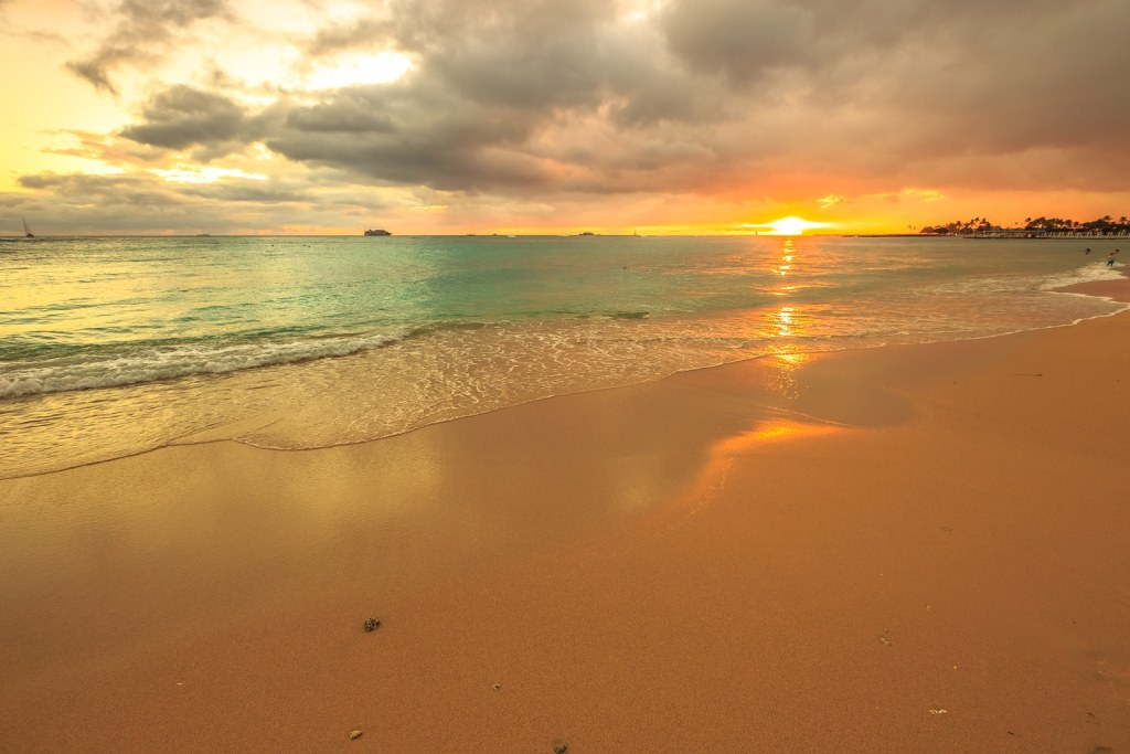 TTN Las Vegas Reviews Island Fun in Oahu, Hawaii 1