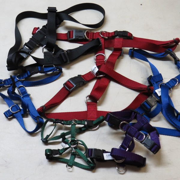Dog H Harness in a variety of colours