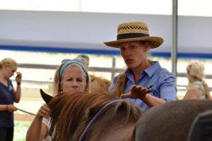 Mandy Pretty describes observations along a horse's back